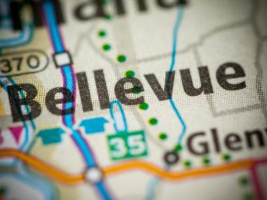 Termites in Bellevue